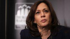 Exasistente de Kamala Harris critica el maltrato hacia el staff de campaña en una mordaz carta de renuncia