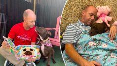 Voluntário de abrigo de cães se muda para canil com cadela solitária que ninguém queria adotar