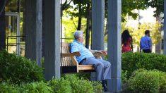"""Mujer se inspira al ver a un anciano solitario y crea """"bancos de charla"""" en los parques públicos"""