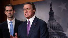 Legisladores republicanos proponen ley que equipara a los cárteles de droga con grupos terroristas