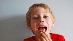 Conservar los dientes de leche de nuestros hijos podría ayudar a su salud en la vida adulta