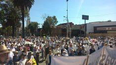 Mexicanos marchan para expresar su descontento ante el primer año de gobierno de López Obrador