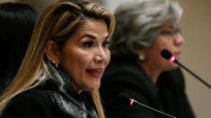 """""""Não tenho nenhuma afinidade"""", disse Añez depois de não ter sido convidada para posse de Fernández"""