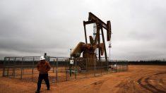 EE.UU. se convierte en exportador neto de petróleo por primera vez en 70 años
