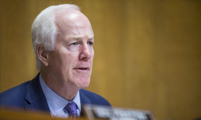 Senador John Cornyn (R-Texas) en Washington - foto de archivo (Zach Gibson/Getty Images)
