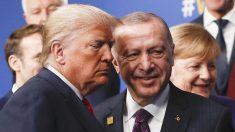 Trump se reúne con Erdogan, elogia a Turquía por proteger a los Estados bálticos y a Polonia