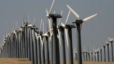 California trata de reducir producción de petróleo generando preocupación por encontrar alternativas