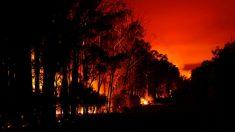 Dipolo do Oceano Índico contribui para condições catastróficas de incêndios na Austrália