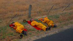 Filha publica foto de pai bombeiro dormindo no chão após combater as chamas na Austrália e viraliza