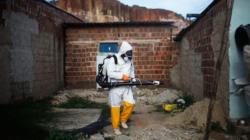 Un trabajador de la ciudad fumiga en un esfuerzo por erradicar el mosquito que transmite el virus Zika el 4 de febrero de 2016 en Recife, estado de Pernambuco, Brasil. (Mario Tama / Getty Images)