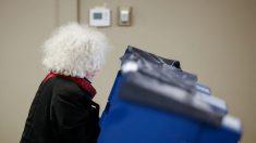 Junta electoral de Illinois admite que ciudadanos no estadounidenses votaron ilegalmente en 2018