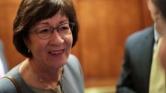 Collins y Romney creen que los artículos sobre Bolton refuerzan la necesidad de testigos