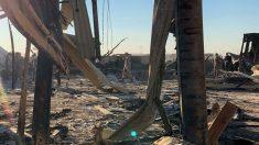 Pentágono: hay 11 soldados afectados por el ataque con misiles de Irán en Irak