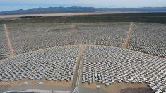 Administración Trump aprueba enorme proyecto de energía solar en California