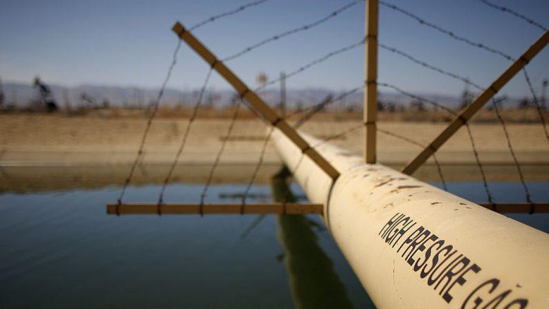 Los gatos bomba y los pozos se ven en un campo petrolífero en la formación Monterey Shale donde se utiliza la fracturación hidráulica, o fracking, para extraer gas y petróleo cerca de McKittrick, California, el 23 de marzo de 2014. (David McNew/Getty Images)
