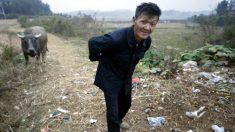"""El campo de China es drásticamente diferente al del """"La-La Land"""" de la estrella de Youtube Li Ziqi"""