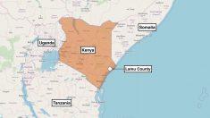 Ataque aéreo de EE.UU. elimina a dos terroristas tras un ataque a base militar en Kenia