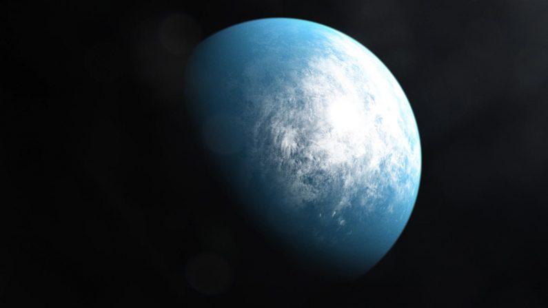 En una galaxia a 100 años luz de distancia, en la constelación de Dorado, se encuentra un sistema planetario llamado TOI 700. Es el hogar de TOI 700 d, el primer planeta de la zona habitable del tamaño de la Tierra descubierto por TESS, el Satélite de Estudio de Exoplanetas en Tránsito de la NASA. (Crédito de la imagen: NASA/Goddard Space Flight Center)