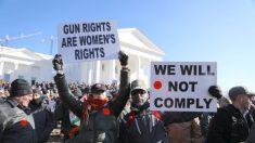 Los controvertidos proyectos de ley de Virginia: control de armas, aborto y Colegio Electoral