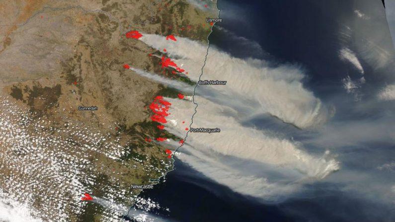 Incendios forestales en la costa este de Australia fuera de control (Vía: nasa.gov)