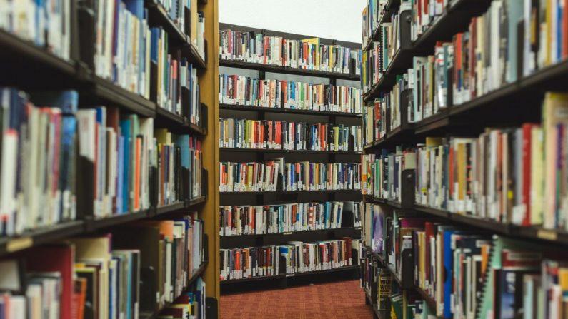 Una ilustración fotográfica de una biblioteca. (StockSnap/Pixabay)