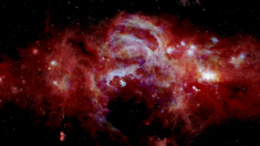 La NASA revela una imagen más nítida del centro de la Vía Láctea con el anillo del agujero negro
