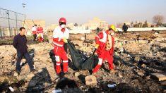 Embajada de Ucrania en Irán descarta referencia a falla de motor como causa del accidente aéreo