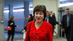 Senadora Collins dice que elección de Trump para director de Inteligencia carece de experiencia