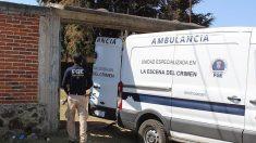 Hallan 24 cadáveres en una fosa clandestina en el oeste de México