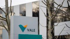La minera brasileña Vale cerró 2019 con pérdidas de 1.683 millones de dólares por desastre minero
