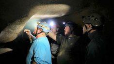 Desentierran cabeza de tiburón de 330 millones de años en el Parque Mammoth Cave, Kentucky