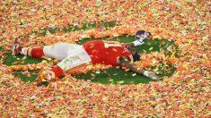 Derrick Nnadi patrocina la adopción para más de 100 perros y así celebrar la victoria del Super Bowl