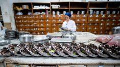 Resultados preliminares de ensayos para tratamiento contra coronavirus estarían listos en 3 semanas