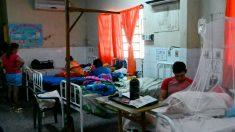 Congreso de Paraguay declara emergencia por dengue tras 16 muertes en 2020
