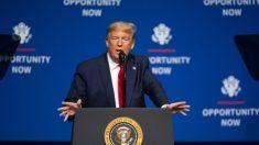 Trump designa a la Chief Resilience Officer de Florida como asesora de Seguridad Nacional