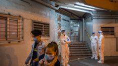 Es imposible predecir qué dirección tomará la epidemia de coronavirus: Director de la OMS