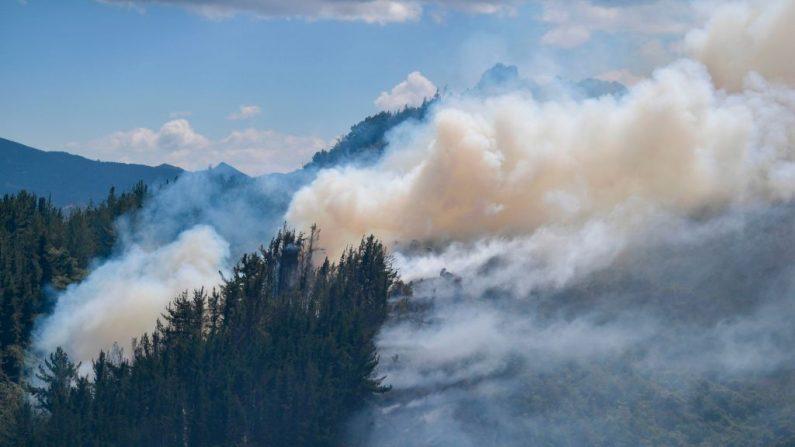 Vista del incendio forestal iniciado después de que las autoridades encontraran y quemaran un laboratorio para el procesamiento de cocaína en Guasca (Colombia) el 13 de febrero de 2020. (ARBOLEDA/AFP/Getty Images)