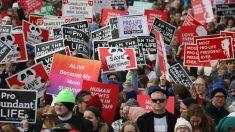 Virginia aprueba proyecto de ley sobre aborto que penaliza médicos que no preserven la vida del niño