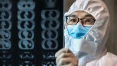 El brote del nuevo coronavirus es 5 a 10 veces peor de lo que admite China, dice estudio