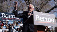 Sanders obtiene el apoyo de los principales grupos políticos musulmanes de EE.UU.
