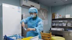 China reporta brote de gripe aviar en la provincia de Hunan, con 18,000 gallinas sacrificadas