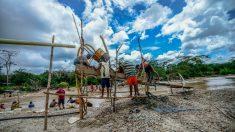 HRW denuncia los abusos cometidos en la minería ilegal de Venezuela