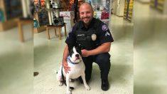 """Programa de policía """"K9 por un día"""" viaja con perros en patrulla y ayuda a que sean adoptados"""