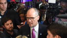 Presidente del DNC dice que no renunciará después del caótico caucus de Iowa