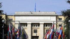 Expertos: EE.UU. debería detener toma de control de China de Agencia de Propiedad Intelectual de ONU