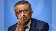 """""""Combatimos a oscuras"""", dice oficial de la OMS en su lucha contra el Coronavirus"""