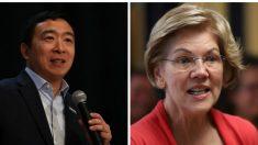 Yang despide a su personal y Warren cancela compra de anuncios después del caucus en Iowa