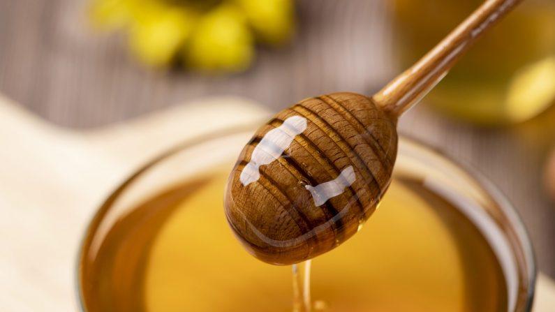 La miel es una alternativa deliciosa y nutritiva a ese edulcorante blanco común relativamente tóxico. (Gasfull/Pixabay)