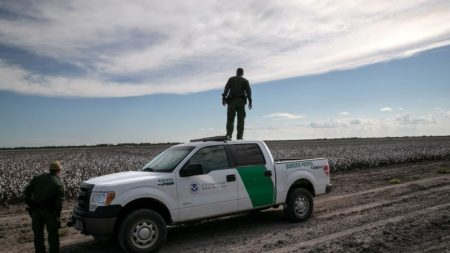 México informa sobre una reducción del 74.5% en cruces fronterizos ilegales hacia EE.UU.