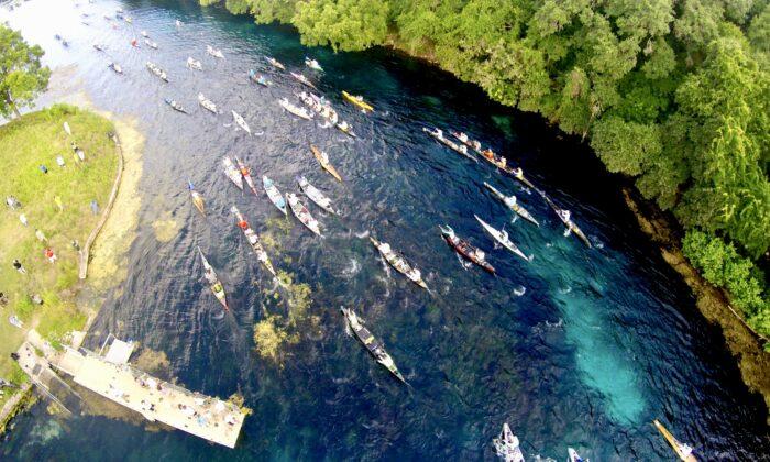 El río San Marcos sirve como un patio de recreo para todo tipo de deportes acuáticos, incluyendo el canotaje. (Cortesía de la Biblioteca de la Asociación del Gran San Marcos)